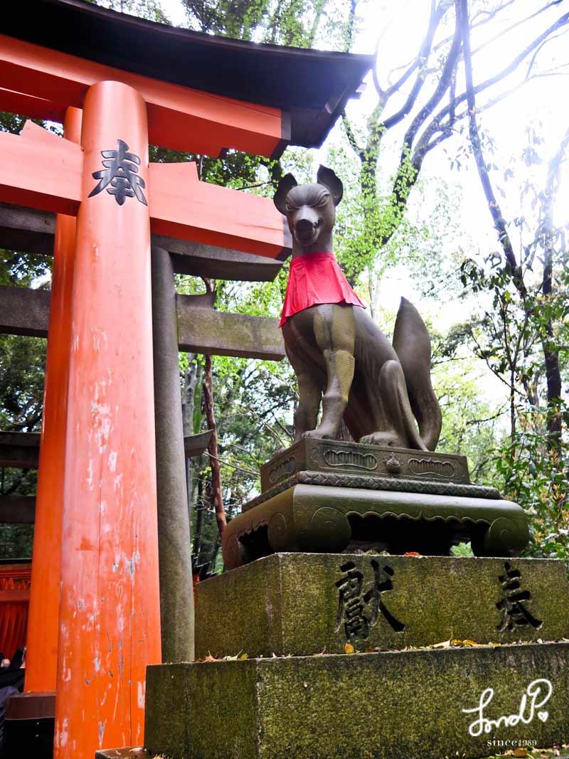 fushimi-inari-taishi09