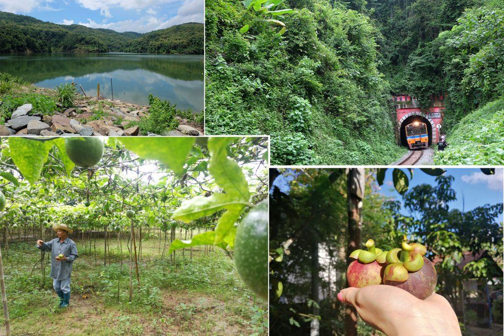 ม่อนลับแล - ป่าวนอุทยานแหล่งท่องเที่ยวเชิงอนุรักษ์ - ศูนย์การเรียนรู้เห็น -สปาส้มซ่า